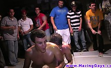 Hot muscled frat dudes oily wrestling